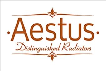 Aestus